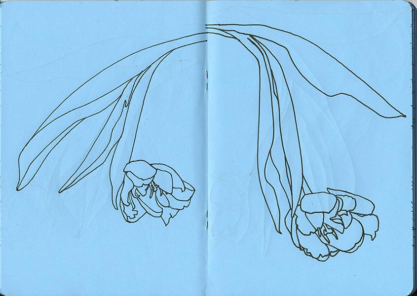 Cahier de dessin
